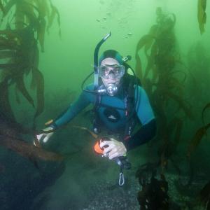Equipo de seguridad-Naylamp Diving