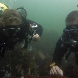 Equipo profesional-Naylamp Diving